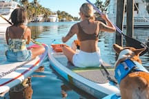 Parks, canal waterway are peaceful to explore & have adventures Paddle Boarding is safe, fun & beautiful