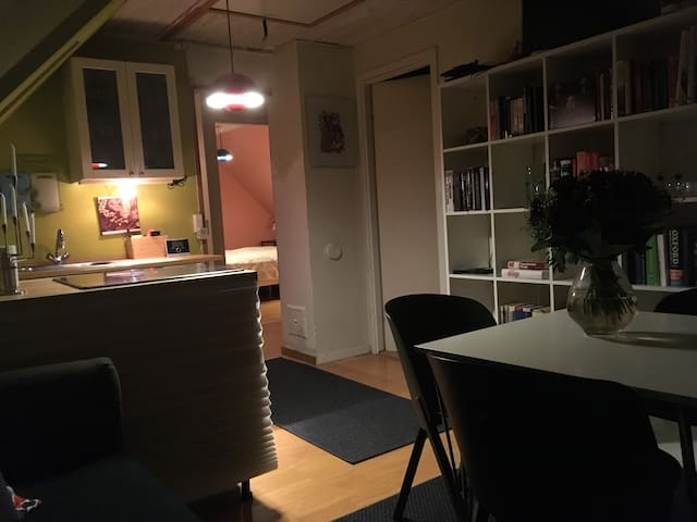 2 Room apartment 20 min. from central Copenhagen - Søborg