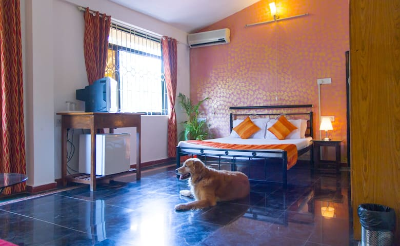 c.Ollie Stays - Siolim - North Goa - North Goa - Bed & Breakfast