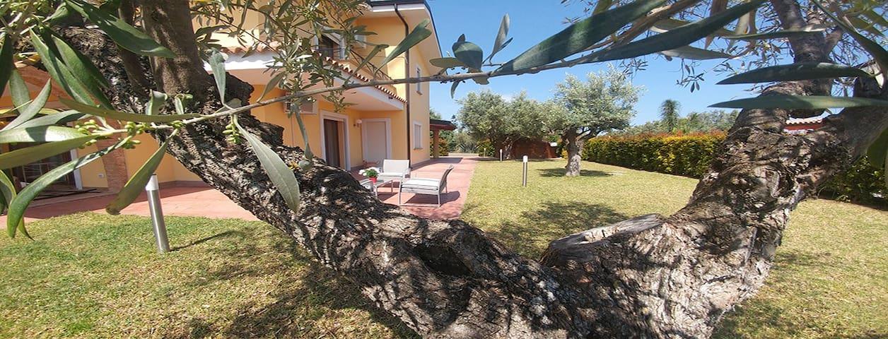 Villa Aurelio