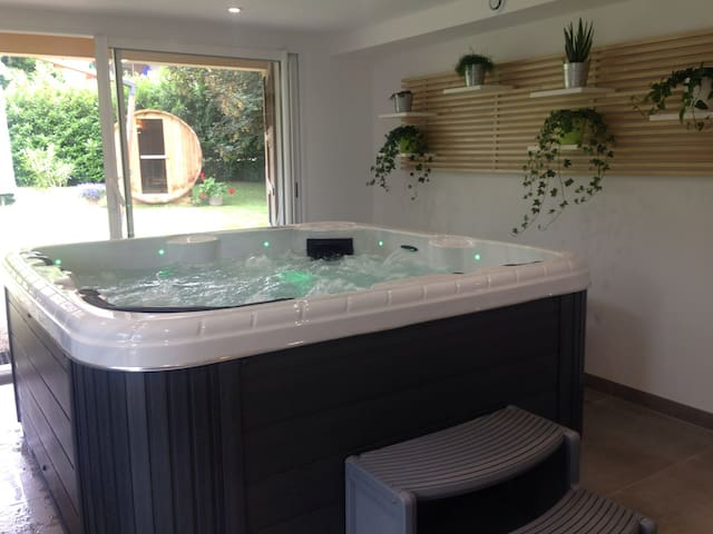 Room with swimming pool, SPA and SAUNA