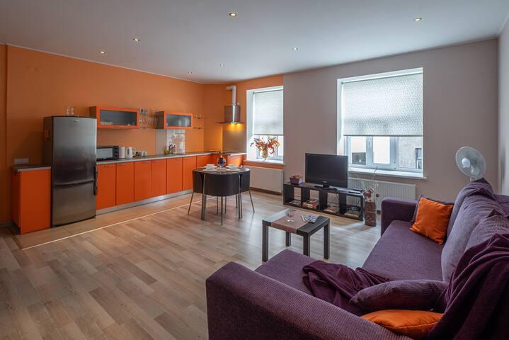 Modern Riga Central Apartment