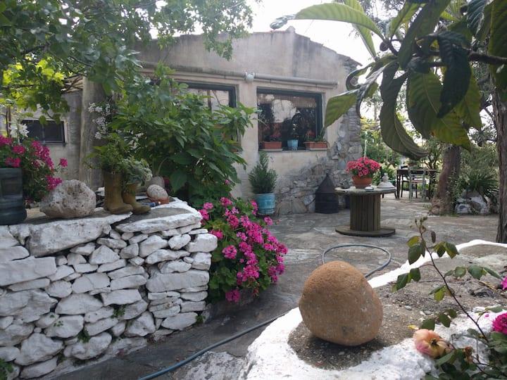 Samos Art House