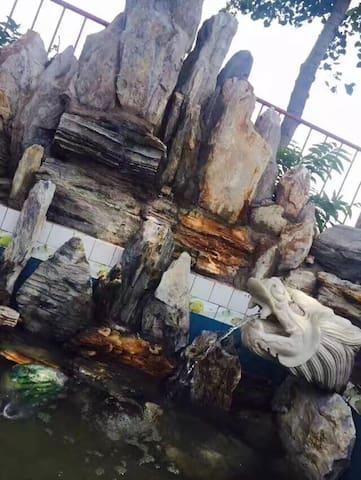 天津的庭院小别墅