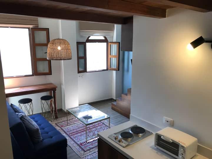 Apartment historic center 401