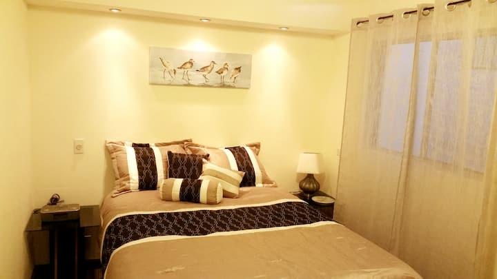 Suite recién renovada, amplia, céntrica y segura