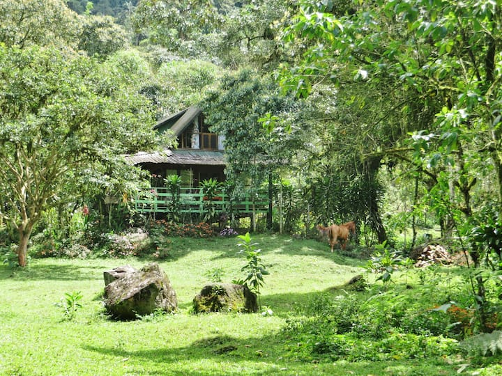 Mindo Eco Chalet with Natural Pool and Waterfalls