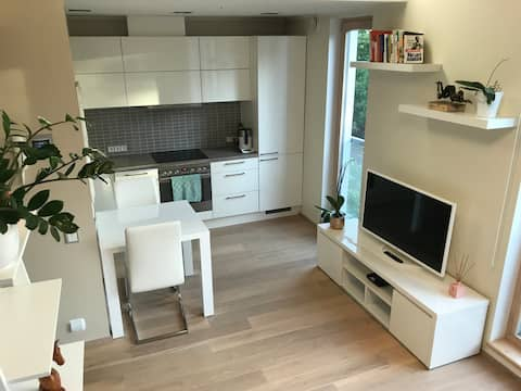 Dream Stay - Smart Studio Apartment w Free Parking