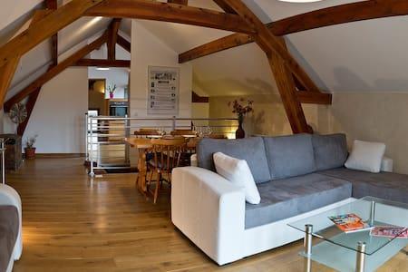 Ecological flat Paris - Carnetin