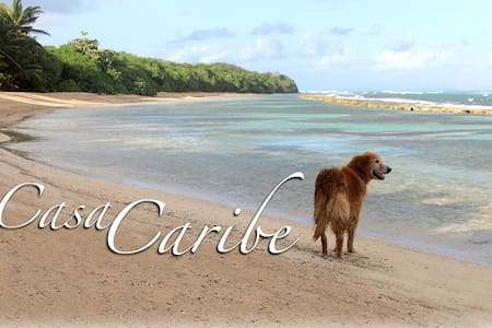 Casa de Caribe-only minutes to secluded beaches... - Santa Maria - Talo