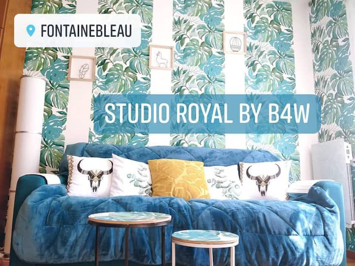 Studio Royal, Place du marché avec parking privé