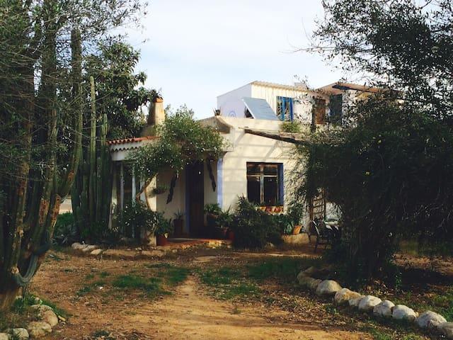 Casa de campo - Benicarló