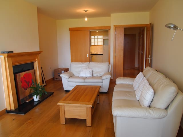 Cozy 1 bed apartment near UCD