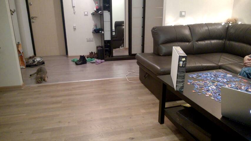 Bright room in quiet place near cen - Minsk - Apartamento