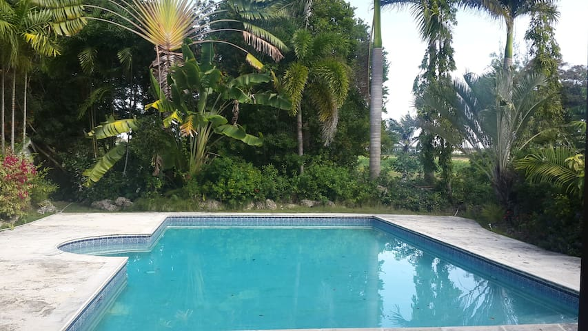 Plantation Cottage with Large Pool - Saint John - Apartment
