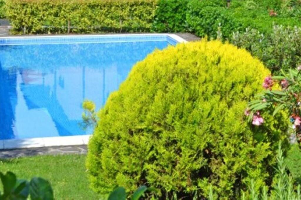 APPARTEMENT CHIARA in Gardone - Ferienwohnung/Appartement am Gardasee mieten - mehr als 100 Objekte am Gardasee - Villa/Ferienhaus/Apartment/Feriendomizil/Ferienvilla am Gardasee - mit Pool/Hund