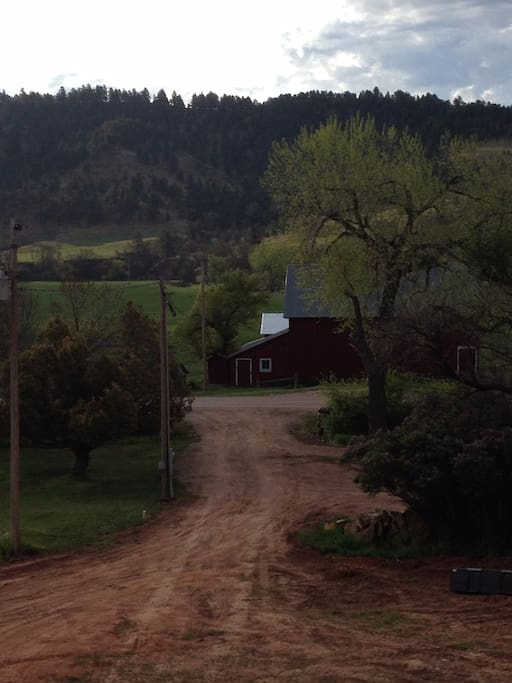 1880 RED BARN VIEWED TO THE EAST OF RV SITE.                              Beautiful SINGLE RV SITE next to a hard top hwy.  Just 2 miles from Custer State Park.  Have 30 amp electric, water and septic dump for your convenience.  Shade trees  and pull thru site.  80 acres of trees and meadows to hike on.   1-7 day stay $30 a night: 7-30 day stay $20 a night.   Rv or tent site only
