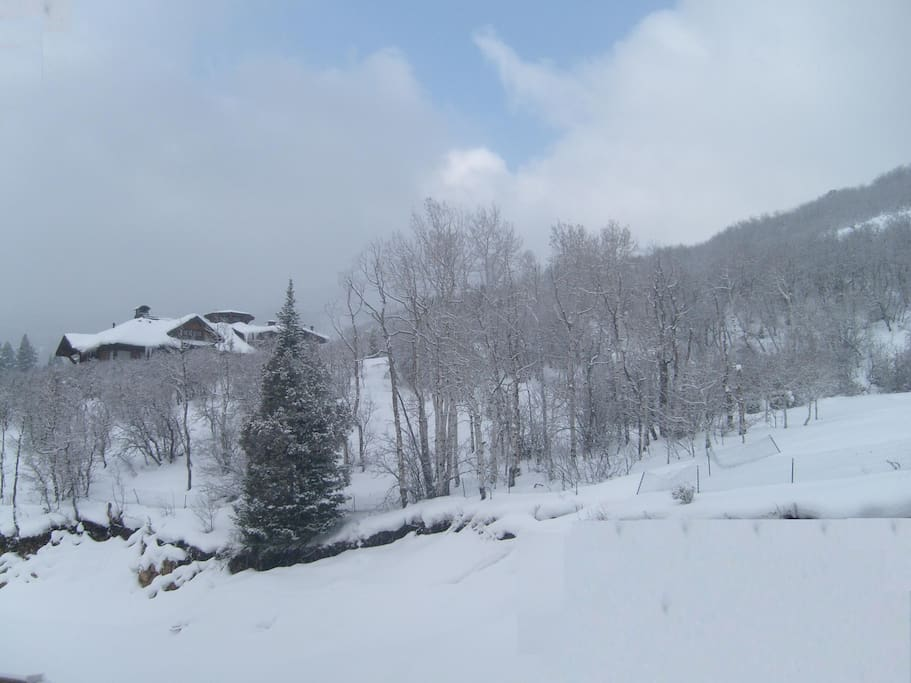 Winter View From Our Unit