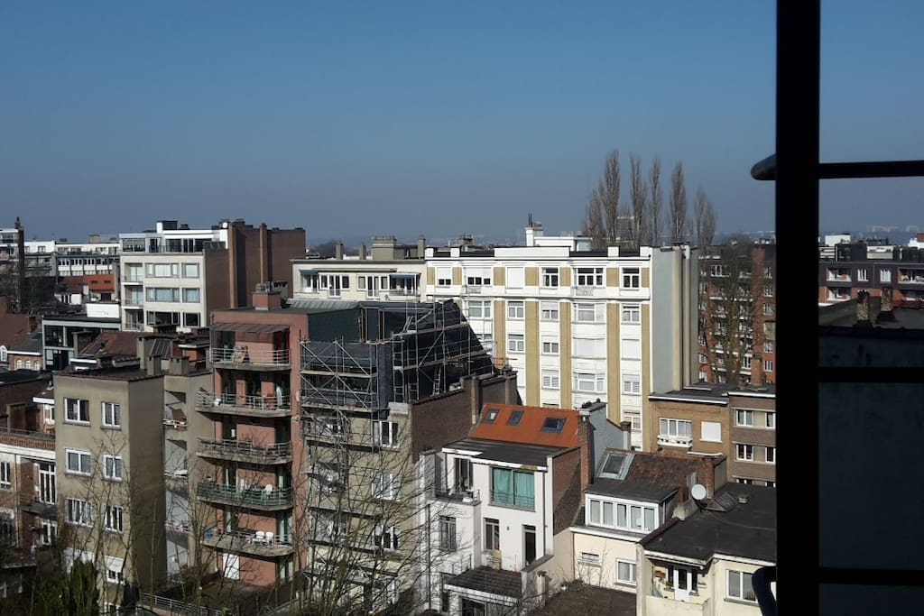 a view over brussels.