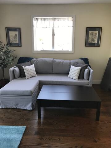 Living Area w/ sofa bed
