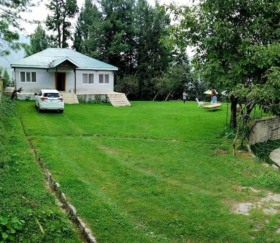 Huge lush green cottage in forest. Very private