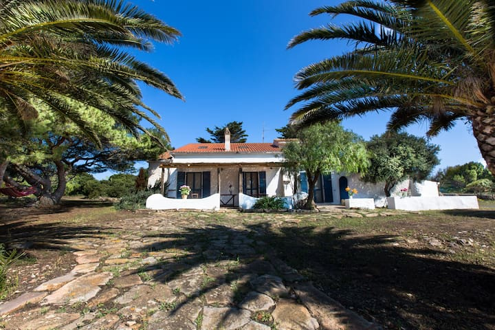 Charming traditional Villa seaside - Carloforte - House