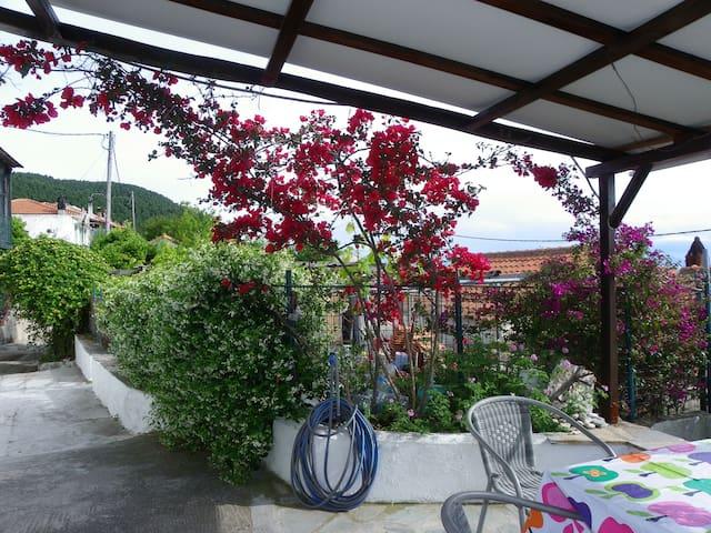 GREEN HOUSE - Skopelos - House