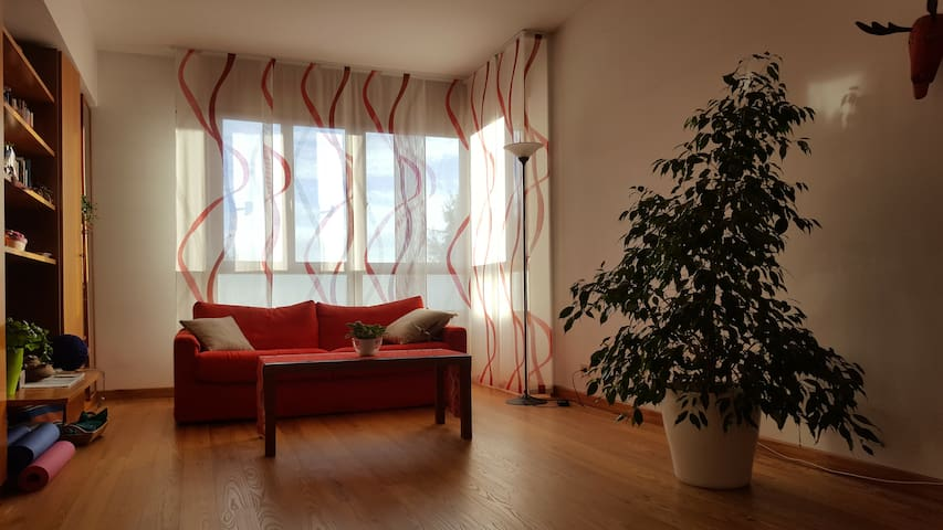 Bright flat close to the center - Pordenone - Apartment
