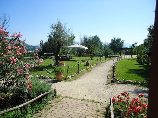 Azienda Agro-Turistica Crete Gialle - Mansarda