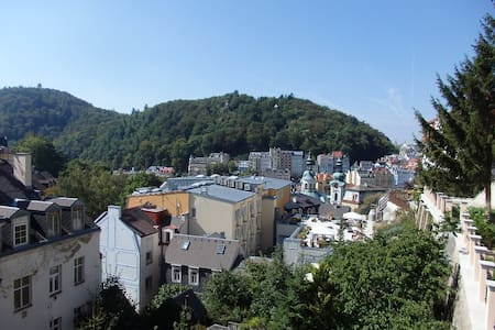 New apartment 2 + 1 in a villa in the center of Ka - Karlovy Vary - Flat