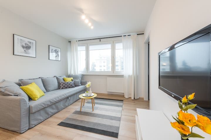 One Bedroom Apartment WORONICZA