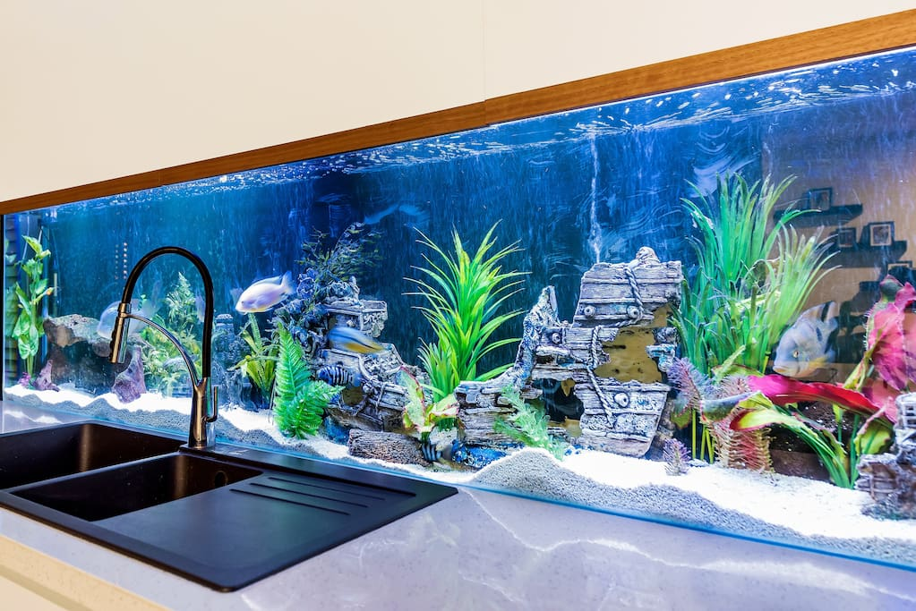 BUILT IN FISH AQUARIUM - ABSOLUTELY AMAZING