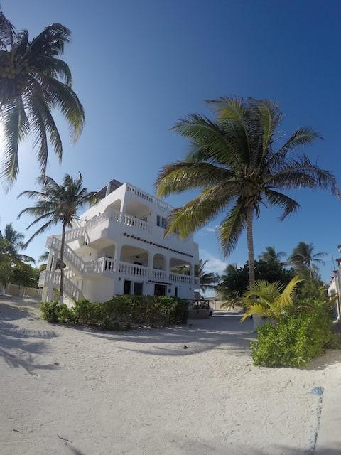 Caribien Casa Blanca Xcalak, Mahi Apt. Niveau 3