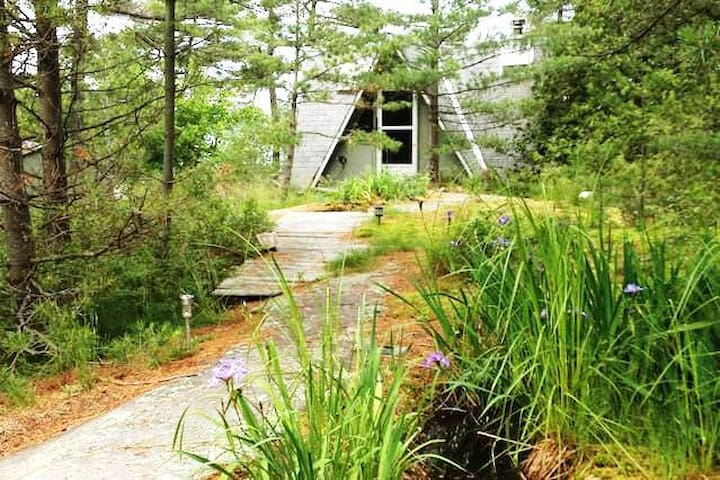 Private, Romantic Cabin on Island in Georgian Bay