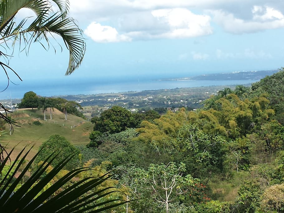 View out the windows and on back porch area overlooking Aguadilla and Aguada and the Atlantic ocean.