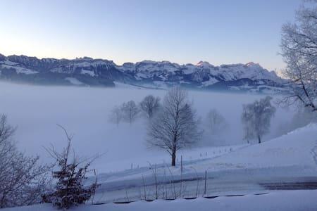 Traumsicht im Appenzellerland - Gais