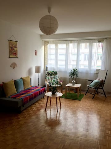 Lovely, Cozy Room in Spacious Apartment! - Genève - Appartement