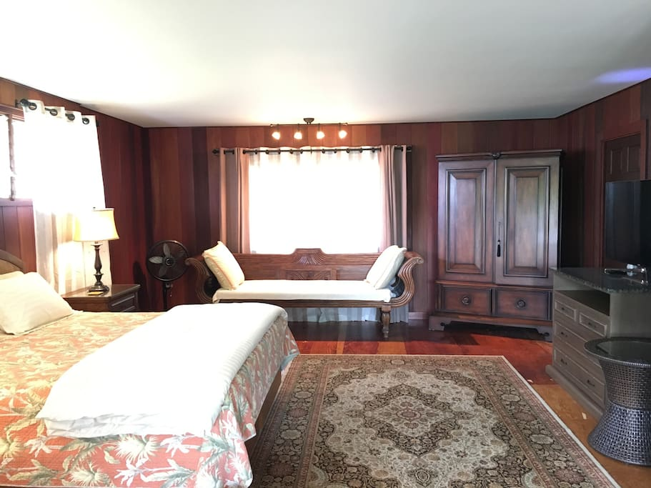 Studio living space with king bed, day bed, armoire, & TV