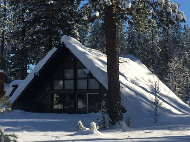 Authentic McCall Cabin Adjacent to Ponderosa Park - McCall - House