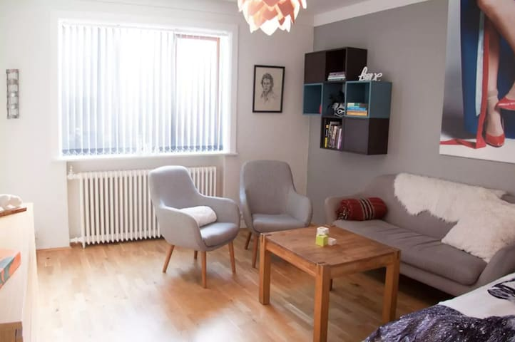 Beautiful Downtown Apartment - Bright and Spacious