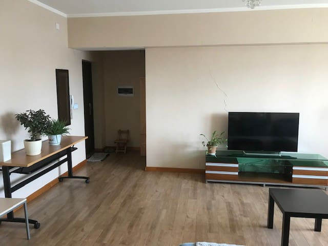 Sunny 1 bedroom in Downtown UB available for rent