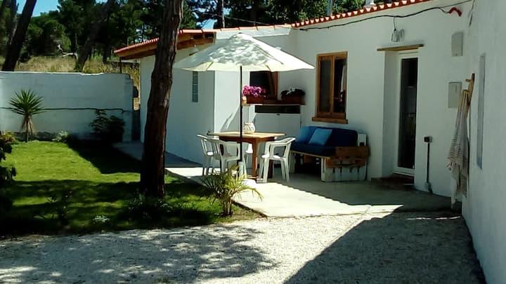 Casa Carmelita, new house in the pinewood