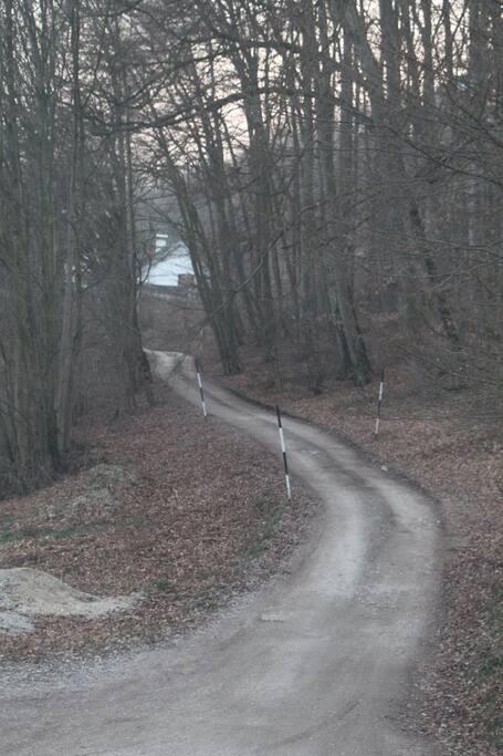 Zufahrt zum Haus