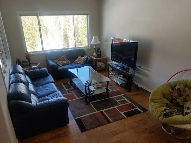 Wilderness townhome - Silverthorne - Maison