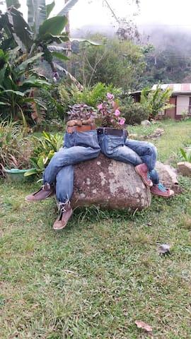 Cedral, un lugar para descansar