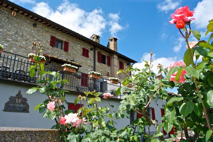 Casa Donella B&B 3, campagna, WiFi, vicino Arezzo.