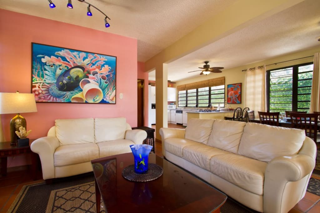 Has a large living room with Plasma TV