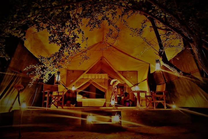 THE PANTHERA YALA - Luxury Tent 01