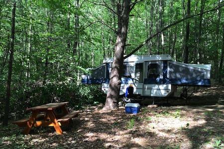 Rustic Camper Cabin w/Electric & Heat - Mökki