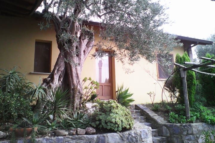 Casetta con giardino in colllina a Reggio Calabria